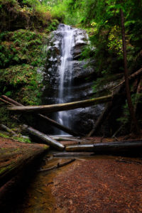 Photo of waterfall, Big Basin, California, by visionbypixels.com