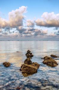 Photo of a reef near the shore of Ka'a'awa, O'ahu, Hawai'i, by visionbypixels.com.