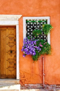 Photo of flowers bursting from a window grid in Venice, Italy.